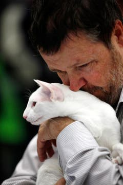 Stefan Ruf aus Brione schmust mit seiner weissen Siamesen-Katze. (Bild: Christof Borner-Keller / Neue ZZ)