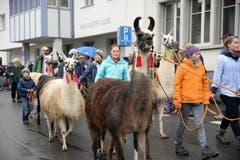 Bild: Robert Hess / Neue NZ