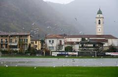 Der vom Regen überschwemmte Fussballplatz Melide (Bild: Keystone)