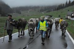 Unterwegs auf der «Boodäfaart» aus dem Klausengebiet auf den Urnerboden. (Bild: Urs Hanhart/Neue UZ)
