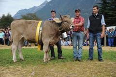 Der neue OB-Rinder-Champion Maedi mit Toni und Theo Kempf aus Attinghausen. (Bild: Urs Hanhart)