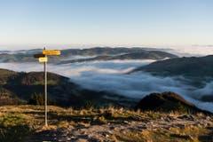 Blick auf das Nebelmeer im Tal, aufgenommen auf der Ebenalp in Weissbad. (Bild: Keystone)