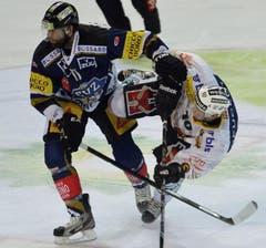 Zugs Andy Woziewski (links) gegen Berns Tristan Scherwey. (Bild: Keystone)