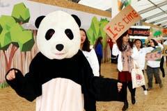 Der Pandabär hält sich raus und führt lieber eine Kundegebungsgruppe aus China an. (Bild: AP Photo/Francois Mori)