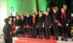 Cantus Vocal-Ensemble unter der Leitung von Elfriede von Rotz. (Bild: Romano Cuonz / Neue NZ)