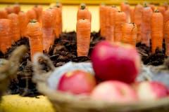 Farbenfrohes Gemüse, präsentiert an der Olma. (Bild: Urs Bucher)
