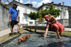 Eine Frau und ein Hund kühlen sich in einem Brunnen im bündnerischen Grono ab. (Bild: Keystone)