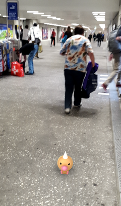 Ein wildes Hornliu in der Bahnhofsunterführung. (Bild: Screenshot)