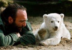 Im Alter von 44 Jahren erlag der Tierpfleger einem Herzinfarkt. (Bild: Keystone)