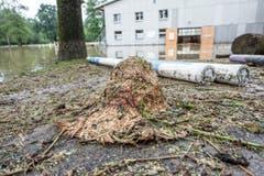 Verwüstung bei der Reitwiese in Wil. (Bild: Hanspeter Schiess)