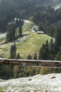 Erster Schnee auf der Fahrt Urnäsch, Chräzerli, Schwägalp. (Bild: Hanspeter Schiess)