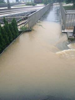 Das Wasser geht bis zu den Bahngleisen. (Bild: Matthias Kohn)