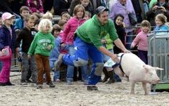Die Schweine werden in Position gebracht. (Bild: Keystone)