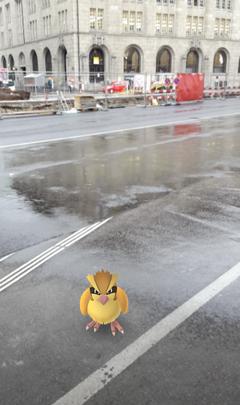 Ein Taubsi auf dem Bahnhofsplatz in St.Gallen. (Bild: Screenshot)