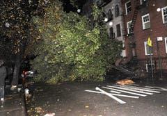 Mehrere Menschen verloren unter umgestürzten Bäumen ihr Leben. (Bild: Keystone)