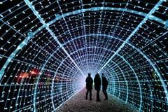 In Vevey konnte man im November Europas längsten Lichtertunnel bestaunen. Für das 50 Meter lange Kunstwerk wurden 28'750 Lichter, 25 Ringe und 1150 Girlanden benötigt. (Bild: LAURENT GILLIERON (KEYSTONE))