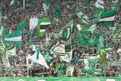 Die Fans begrüssen ihre Europa-Helden. (Bild: Michel Canonica)