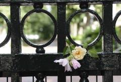 Blumen vor dem Palast im Gedenken an Prinz Johan Friso. (Bild: Keystone)