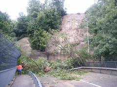 In Freiburg stürzten Bäume auf die Strasse in Richtung Bourguillon. (Bild: Kapo FR)