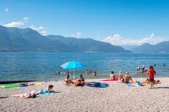 Sonnenbaden am Lago Maggiore. (Bild: Urs Bucher)
