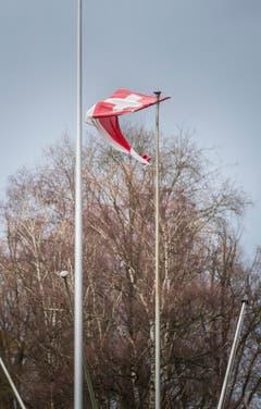 Am Bodesee windete es bereits am Mittwochmorgen stark. (Bild: Andrea Stalder)