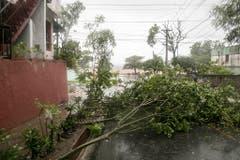 Umgefallene Sträucher und Bäume in der Dominikanischen Republik. (Bild: TATIANA FERNANDEZ (AP))
