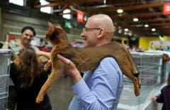 Die vierbeinigen Lieblinge werden an der Animalia auf Händen getragen. (Bild: Ralph Ribi)