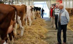 Mit Kennerblick werden die Kühe begutachtet. (Bild: Reto Martin)