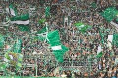 Grossartige Stimmung bei den FCSG-Fans. (Bild: Michel Canonica)