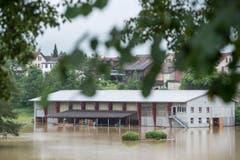 Die überschwemmte Reitwiese in Wil. (Bild: Hanspeter Schiess)