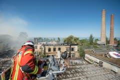 Brand auf dem Raduner-Areal in Horn (Bild: Urs Bucher)