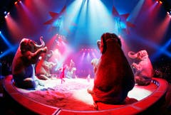 Schöne, bunte Zirkuswelt - nun heisst es Abschiednehmen von den Knie-Elefanten. (Bild: Keystone)