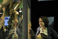 Auch die Schlangen vermochten die Besucherinnen und Besucher zu faszinieren. (Bild: Ralph Ribi)