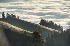 Wolken wogen wie Wellen über das Rheintal, aufgenommen auf dem St.Anton (30.12.2016). (Bild: Ralph Ribi)