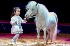 Zuckerschnecke: Die dreijährige Chanel Marie Knie, Tochter von Géraldine Knie und Maycol Errani, ist zum ersten Mal in der Manege zu sehen - und tritt nur auf, wenn sie Lust dazu hat. (Bild: Keystone)