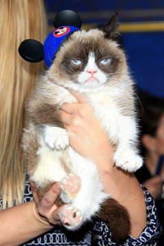 Schon gemein, dass sie nicht lächeln kann: Grumpy Cat. (Bild: Keystone)