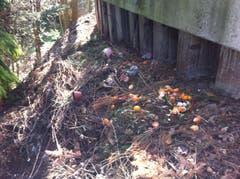 Statt in der Abfalltonne landete auch dieser Kehricht im Wald. (Bild: Reto Bless)