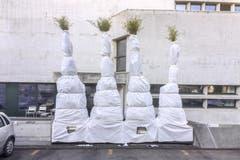 Hauptsache, die Parkplätze bleiben sichtbar: Christo-mässig eingepackte Pflanzen beim Stadttheater St.Gallen (22.12.2016). (Bild: Urs Bucher)