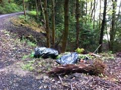 Kommt immer wieder vor: Kehrichtsäcke mit Abfall in der Idylle des Waldes. (Bild: Reto Bless)