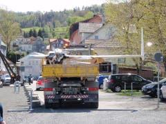 Abtransport für genauere Untersuchungen. (Bild: Seerettungsdienst Rorschach)