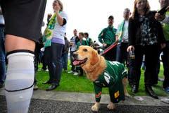 Auch Hund Genee freut sich über den Aufstieg. (Bild: Urs Bucher)