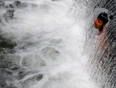 Abkühlung in einem Wasserfall, fotografiert in Indien. (Bild: FAROOQ KHAN (EPA))