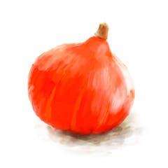 Je kleiner der Kürbis, desto intensiver sein Geschmack. Der Rote Hokkaido, auch kleiner Knirps genannt, eignet sich ideal für Suppe: Sein grell-oranges Fleisch gibt eine tolle Farbe und crèmige Konsistenz. Wie gut, dass man auch seine Schale mitessen kann. (Bild: Sandra Näf)