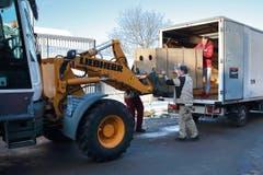 Die Tigerin wird in der Transportbox ausgeladen. (Bild: pd)