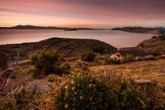 Isla del Sol, Titicacasee. (Bild: Cyrill Schlauri)