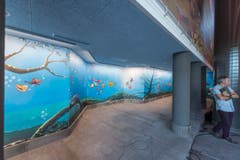 Wie Fische im Wasser dürften sich die Badegäste im renovierten Säntispark fühlen. (Bild: Hanspeter Schiess)