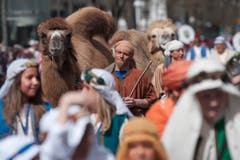 Auch Kamele gab es zu sehen. (Bild: Urs Jaudas)