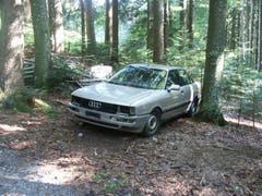 Ein Auto steht im Walde... (Bild: Oberforstamt Appenzell Ausserrhoden)