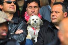 Im Paul-Grüninger-Stadion sind auch Hunde willkommen. (Bild: Urs Bucher)