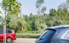 Unwetterschäden in Eschenz. (Bild: Andrea Stalder)